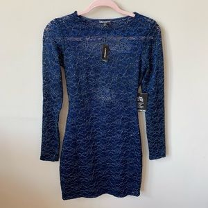 NWT! Express shimmer lace bodycon dress #373